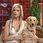 tv8-fulden-uras-ayşe-williams-hayvan-sevgisi